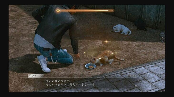 【ロストジャッジメント】猫の場所は?異人町と神室町の猫の居場所と評判の上げ方を紹介【ジャッジアイズ2】